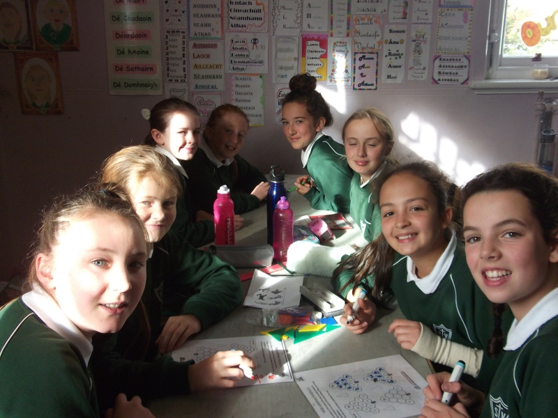 Room 19 Ms Mulvey 026
